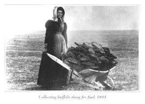 Pioneer woman is hot? NOT.